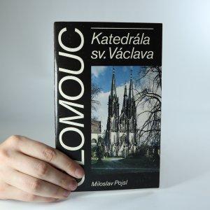 náhled knihy - Olomouc. Katedrála sv. Václava