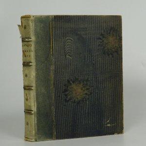náhled knihy - Mysterium lásky a útrpnosti Johanny d'Arc