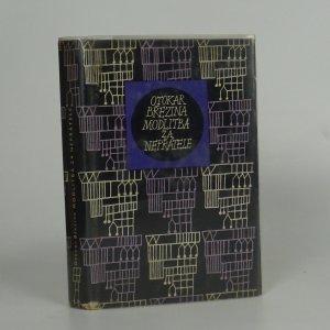 náhled knihy - Modlitba za nepřátele