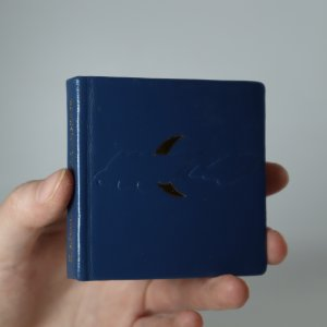 náhled knihy - Villa Borghese