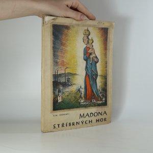 náhled knihy - Madona Stříbrných hor