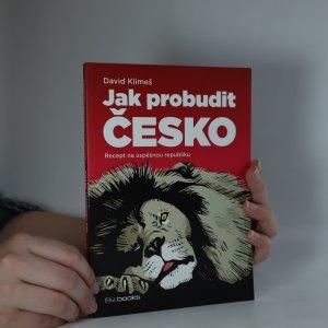 náhled knihy - Jak probudit Česko. Recept na úspěšnou republiku