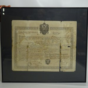náhled knihy - Propouštěcí dekret z rakouské armády z roku 1857