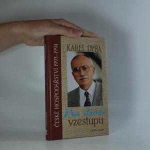 náhled knihy - Na dráze vzestupu. České hospodářství 1993-1994