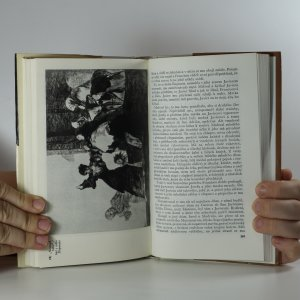 antikvární kniha Goya čili trpká cesta poznání, 1966