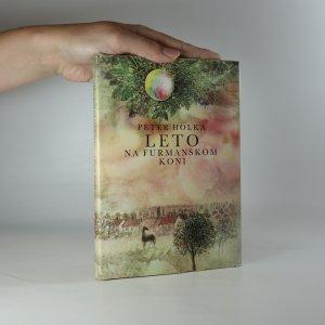 náhled knihy - Leto na furmanskom koni