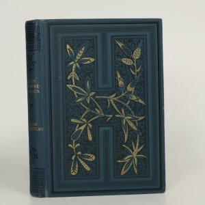 náhled knihy - Historie velikosti a pádu Césara Birotteau  (kniha je cítit kouřem)