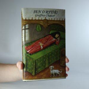 náhled knihy - Sen o rytíři