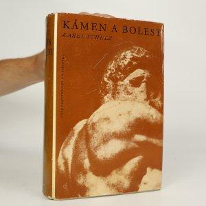 náhled knihy - Kámen a bolest. Michelangelo Buonarroti
