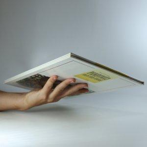 antikvární kniha Panovníci Svaté říše římské. Od Karla Velikého přes Karla IV. po Františka II. 747-1835, 1994