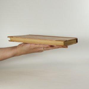 antikvární kniha Vychovatelka, neuveden