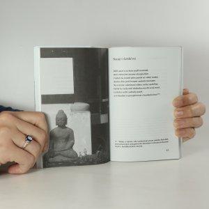 antikvární kniha Slyším padat sníh, 2010