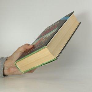 antikvární kniha Věčná Ambra, 1990