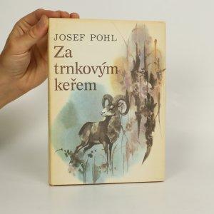 náhled knihy - Za trnkovým keřem