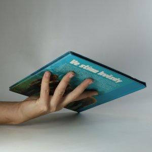 antikvární kniha Ve stínu hvězdy, 2008