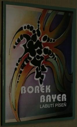 náhled knihy - Borek Bayer: Labutí píseň : Slováckem k malbě posledního desetiletí