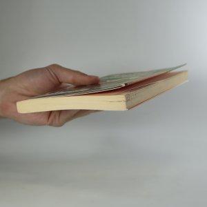 antikvární kniha Anglické prázdniny, 2011