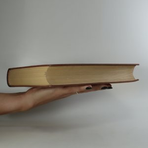 antikvární kniha Bratrstvo. 3. díl. Žebráci, 1931