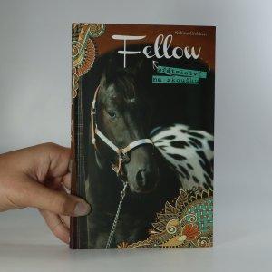 náhled knihy - Fellow, přátelství na zkoušku