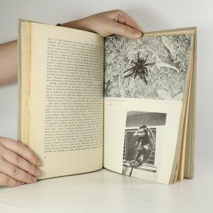 antikvární kniha Brazília - zem neznáma?, 1967