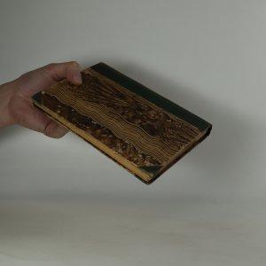antikvární kniha Pod starými krovy, 1900