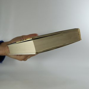 antikvární kniha Žebrák se stříbrnou holí, 1987