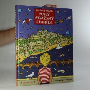 náhled knihy - Malý pražský chodec