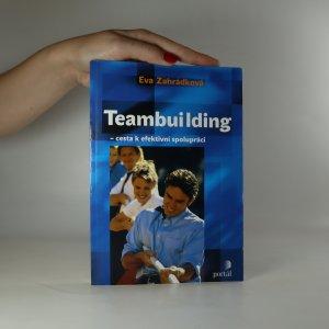 náhled knihy - Teambuilding. Cesta k efektivní spolupráci