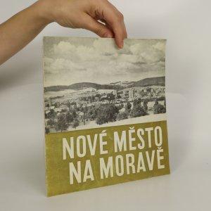 náhled knihy - Nové Město na Moravě
