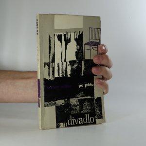 náhled knihy - Po pádu