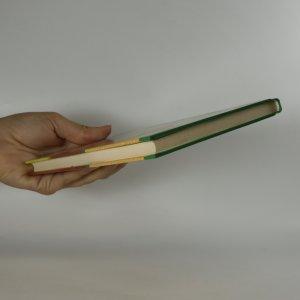 antikvární kniha Léčba stresu metodou čtyř stavů rovnováhy, 2004