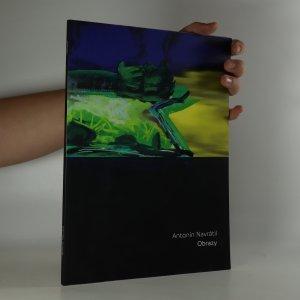 náhled knihy - Antonín Navrátil, Obrazy