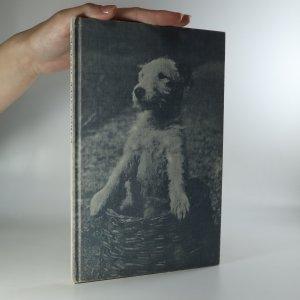 náhled knihy - Dášenka čili Život štěněte
