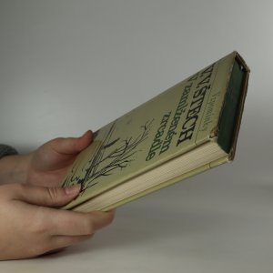 antikvární kniha V zamlženém zrcadle. 1. díl, 1967