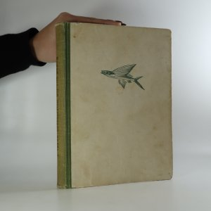 náhled knihy - Dvadsaťtisíc míľ pod morom