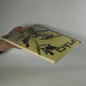 antikvární kniha Ptáci, neuveden