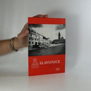 náhled knihy - Slavonice. Městská památková rezervace a památky v okolí