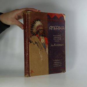 náhled knihy - Amerika. Kulturní obrázky z Ameriky severní