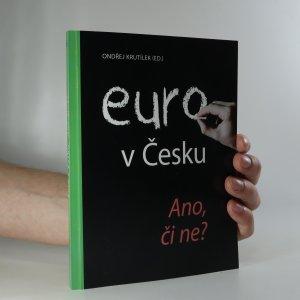 náhled knihy - Euro v Česku ano, či ne?