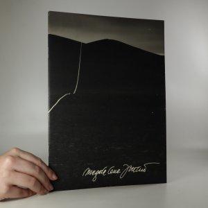 náhled knihy - Magdalena Jetelová