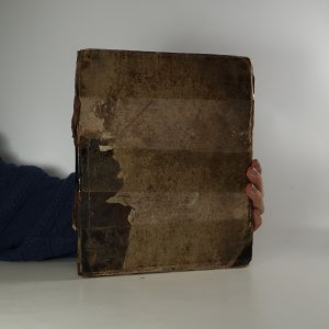 náhled knihy - Jindy a nyní. Sbírka obrazů (nekompletní, popsáno v poznámce níže)