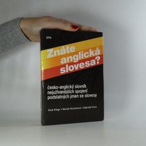 náhled knihy - Znáte anglická slovesa? Česko-anglický slovník nejužívanějších spojení podstatných jmen se slovesy