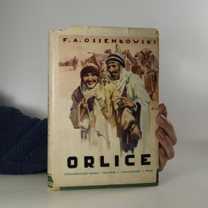 náhled knihy - Orlice. Marocký román