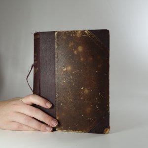 náhled knihy - Divý plamen