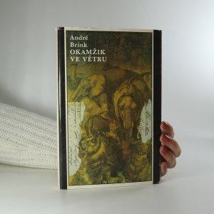 náhled knihy - Okamžik ve větru