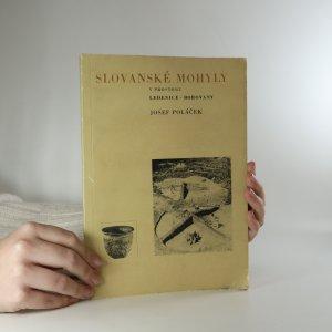 náhled knihy - Slovanské mohyly v prostoru Ledenice-Borovany