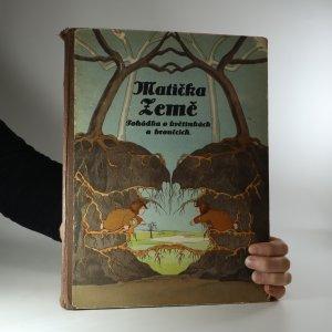náhled knihy - Matička země. Pohádka o květinkách a broučcích
