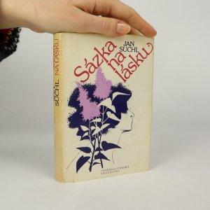 náhled knihy - Sázka na lásku