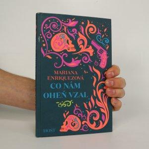 náhled knihy - Co nám oheň vzal