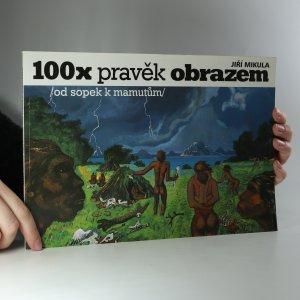 náhled knihy - 100x pravěk obrazem. Od sopek k mamutům
